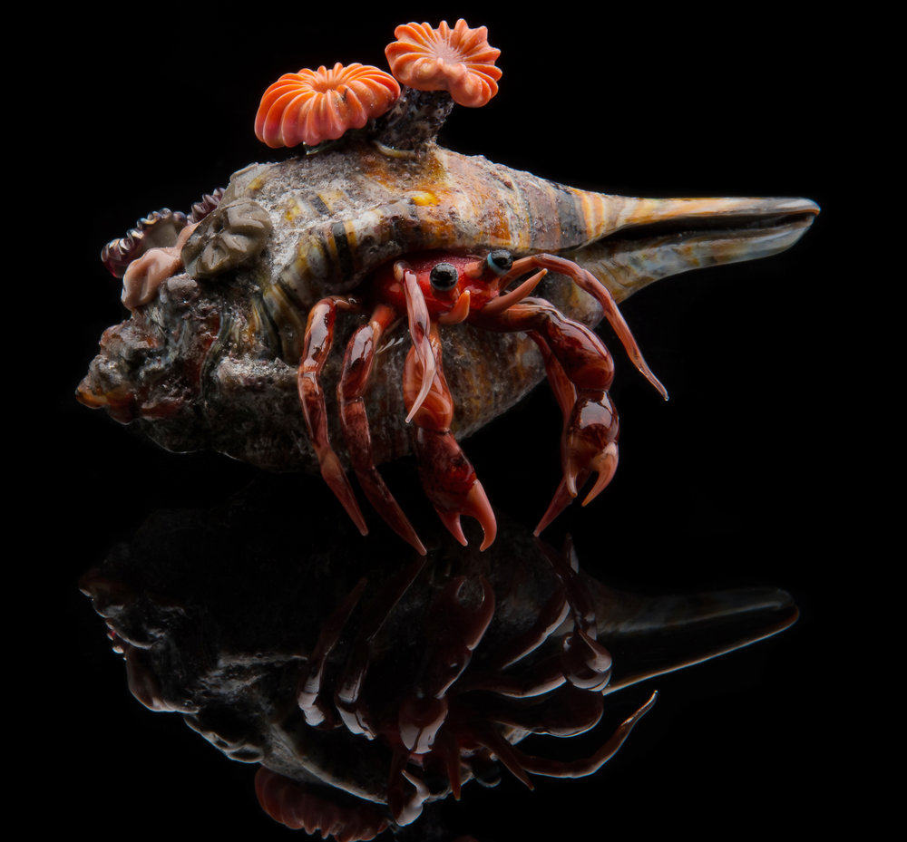 Vittorio Costantini,  Hermit Crab  (glass, 5 inches), VC.254