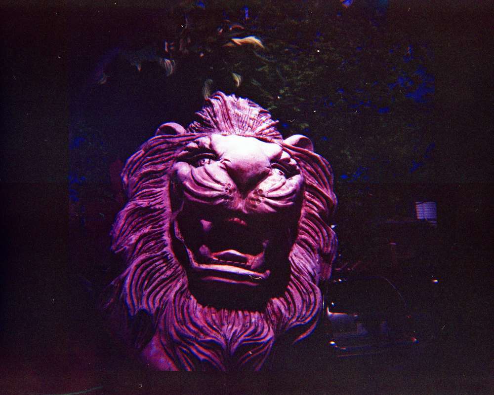 Stone-Lion.jpg