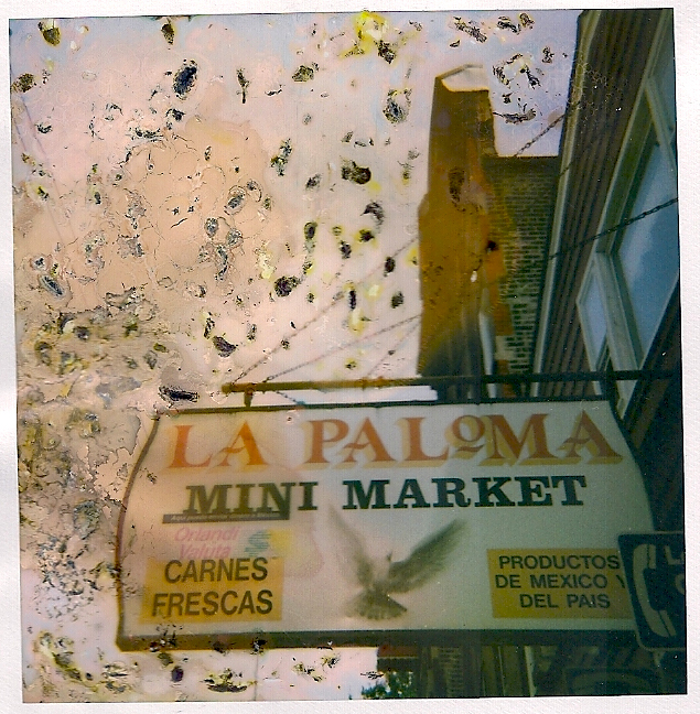 La Paloma.jpg