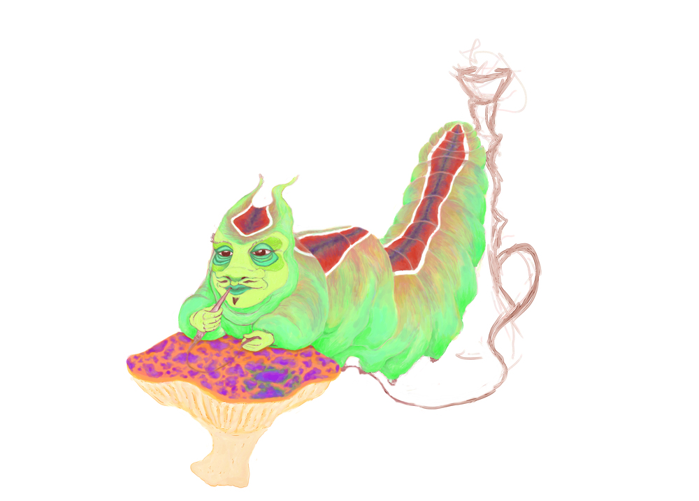 caterpillar15.jpg