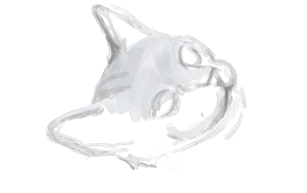 cat01cropped.jpg