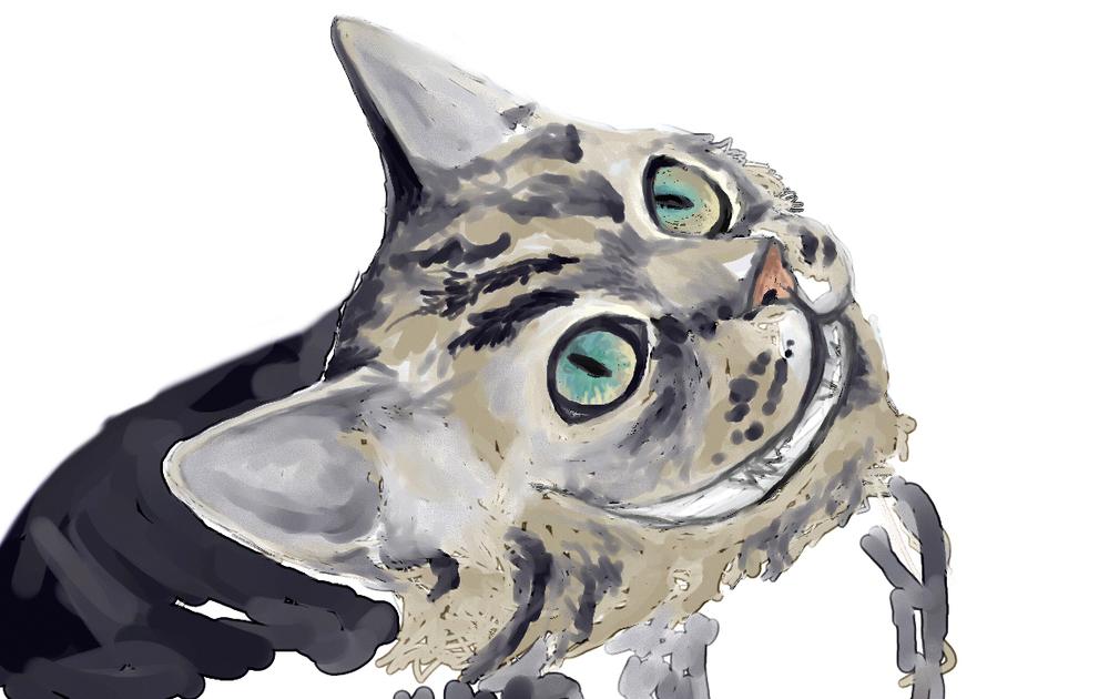 cat03cropped.jpg