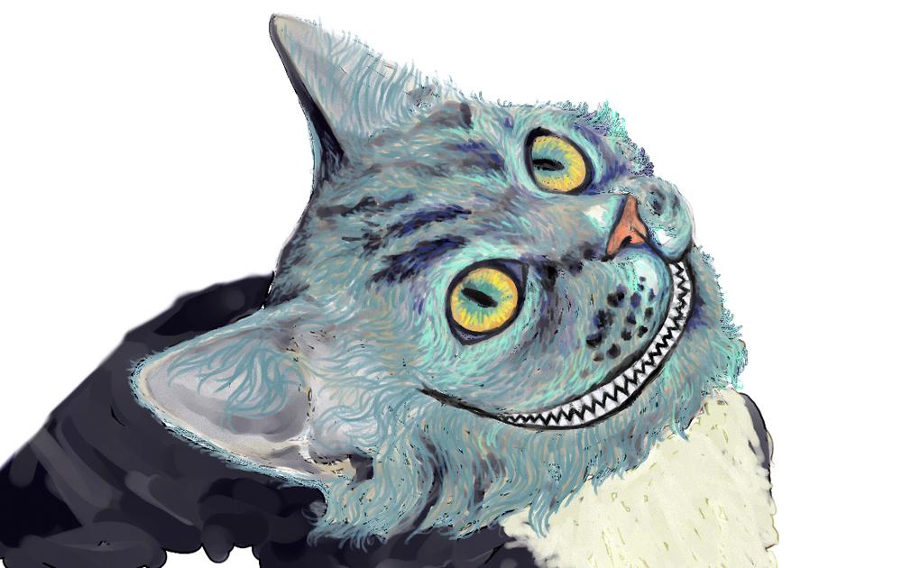 cat06cropped.jpg