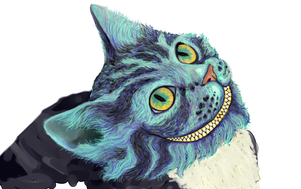 cat11cropped.jpg