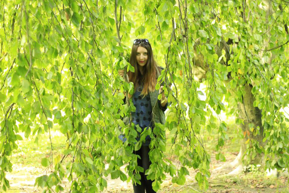 willow3.jpg