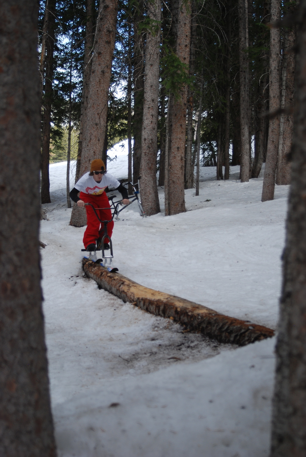 Cam Wood in the woods riding across some wood