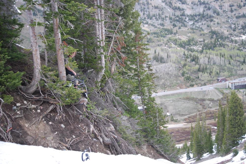 LERKING...  in the hills of Alta.