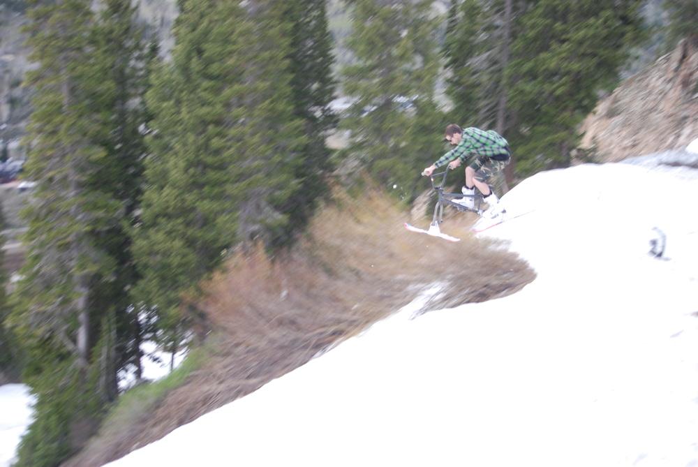 Deep in the hills of Alta. Greg Ingersoll