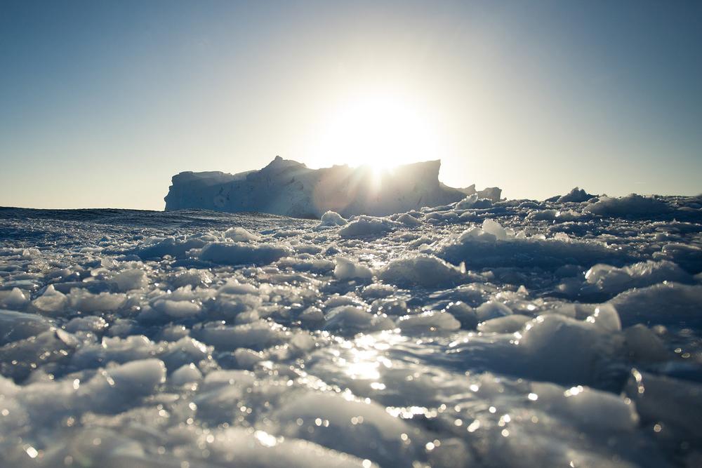 004-TW-Icebergs-140119.jpg