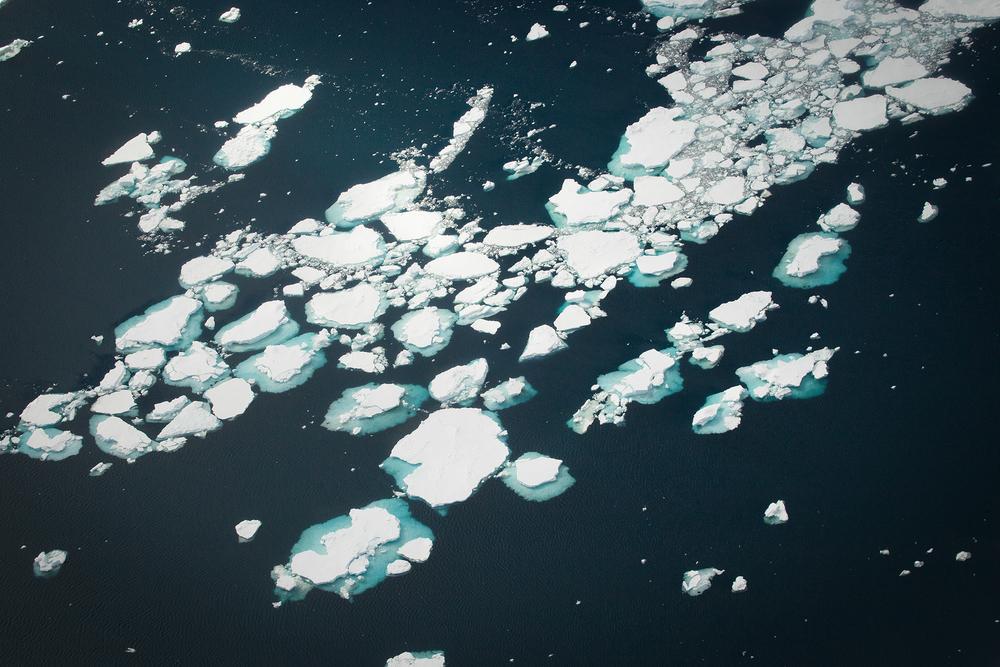006-TW-Icebergs-140105.jpg