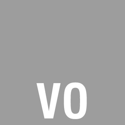 2. VO grijs.jpg