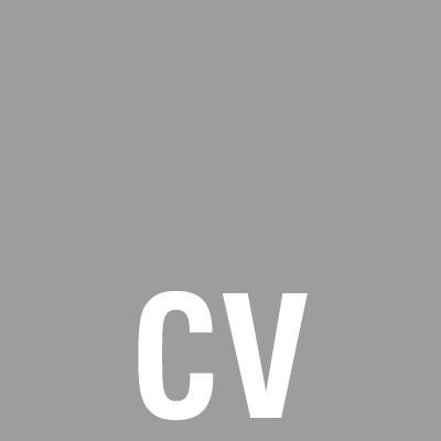 4. CV grijs.jpg