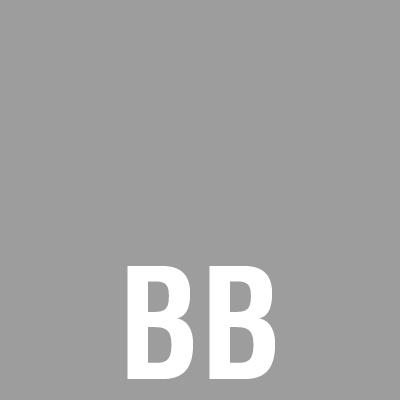 5. BB grijs.jpg