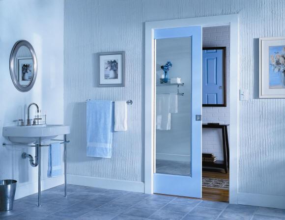 Mirrored Pocket Door 1 Lite