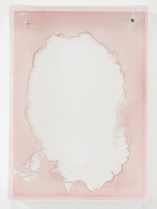 Haley Tomkins -  Planter  (2011) - Watercolor & plastic