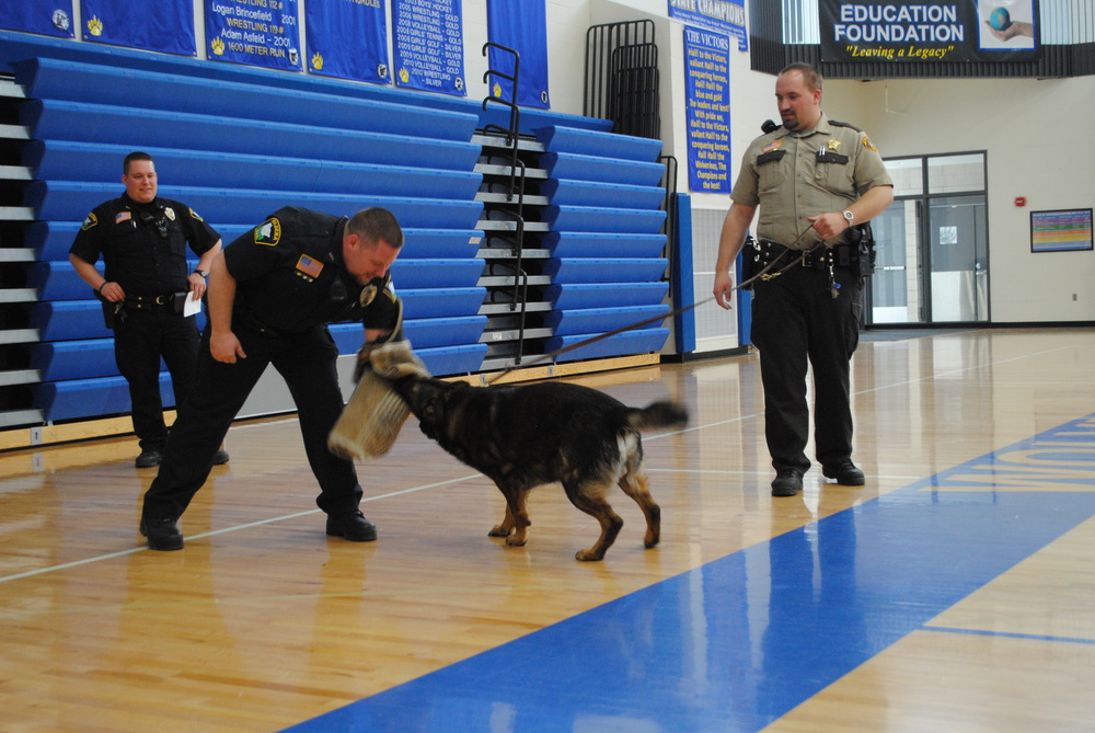 "Zeus ""attacks"" the protected arm of Wadena Police Officer Nick Grabe while Zeus's partner, Wadena County Deputy Bryan Savaloja holds on during the DARE presentation on April 9 at WDC."