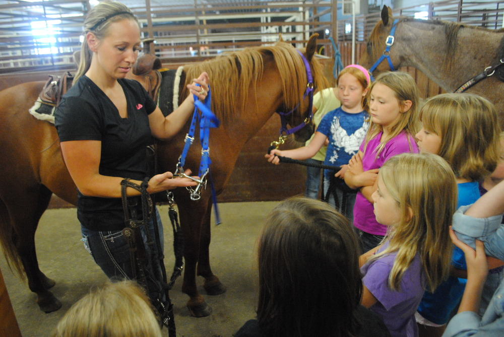 Sarah Madsen explains the different halters and bridles