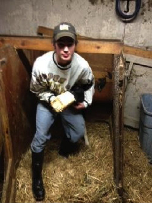 Mitch Janson feeds a newborn calf colostrum in his Dairy Placement Proficiency on Janson Dairy near Wadena. Courtesy photo.