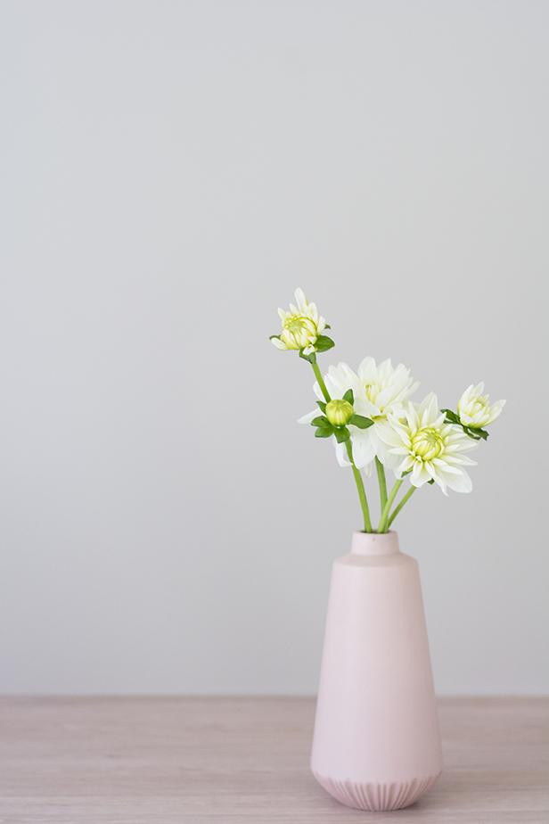 dahlia-buds-pink-vase.jpg