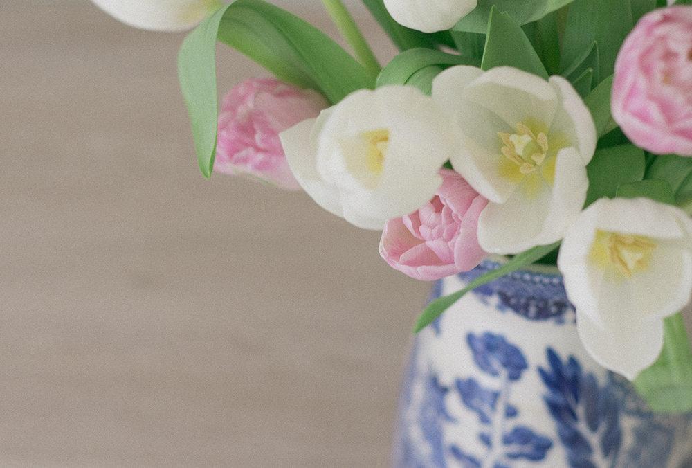 pink-white-tulips-6-ss.jpg