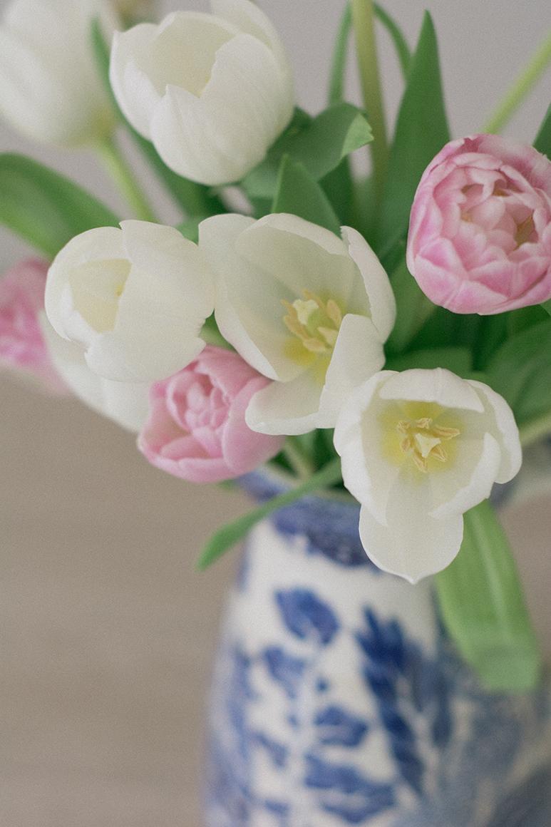 pink-white-tulips-5-ss-2.jpg