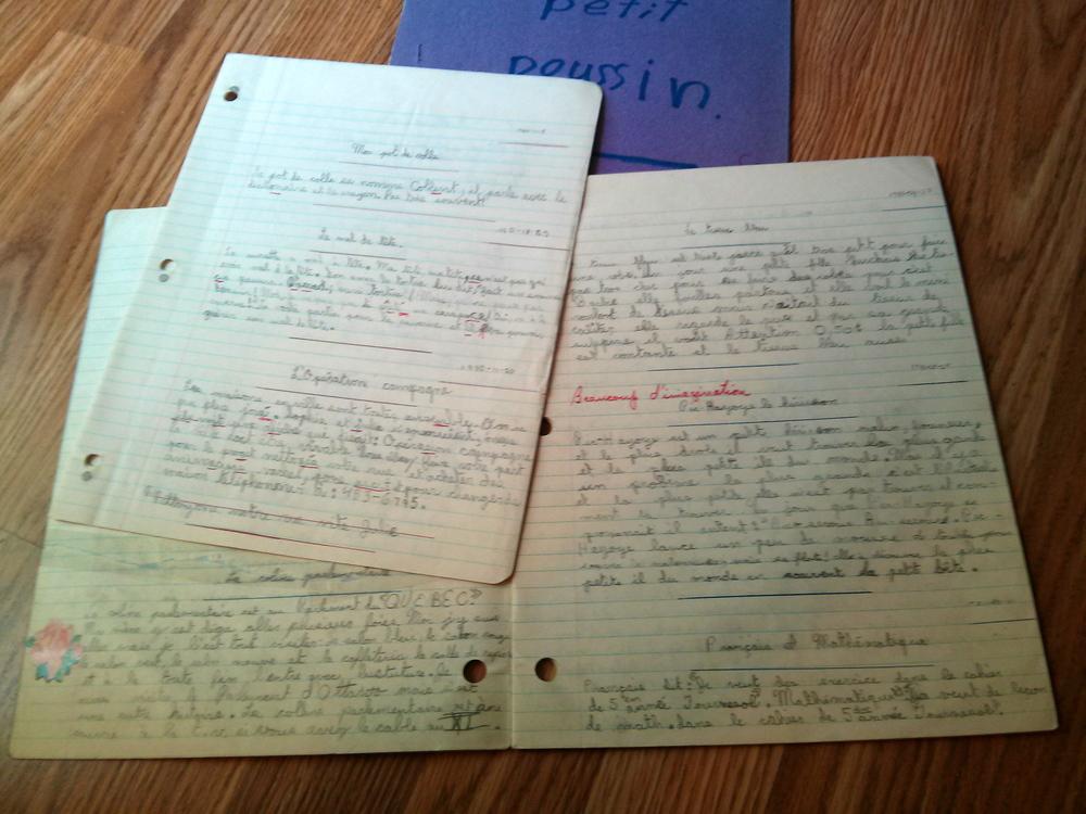Des cahiers bourrés de mes écrits on-ne-peut-plus juvéniles...