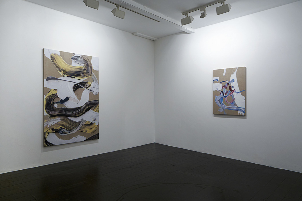 Installation view - Cosmic Flesh & Tender Limbs