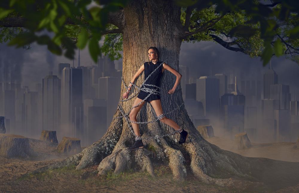 140515_last_tree_003.jpg