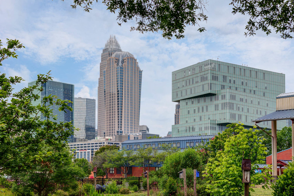architecture photography of uptown charlotte buildings.jpg