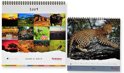 sappi-africa-2010-calendars-silver.jpg