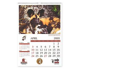 sappi-africa-2005-calendars-bronze.jpg