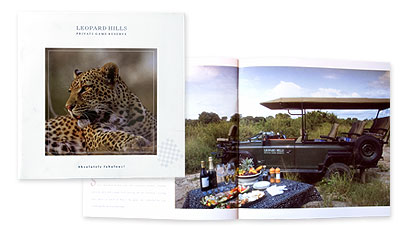 sappi-africa-2002-brochures-silver.jpg