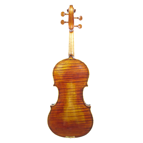 AS_Violin_CA800AT_Back.PNG