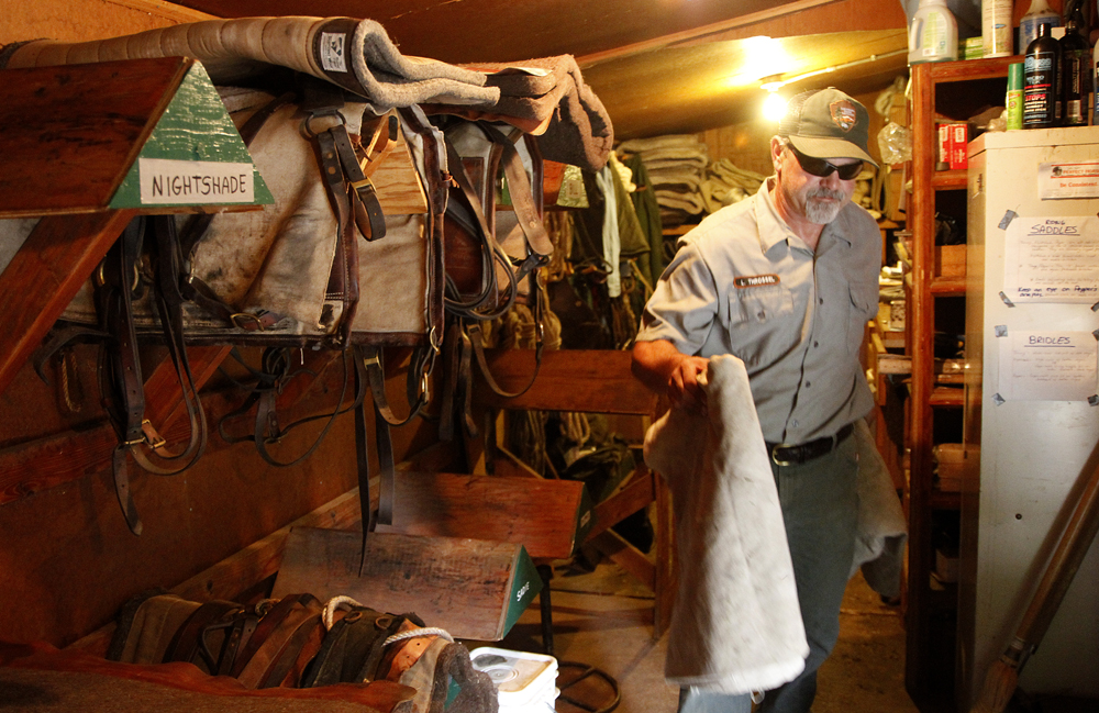 Park Service trails worker Lee Throssel, grabs a couple of manties to be used as weights from the tack room at the Marblemount ranger station for a training ride with several horses and mules, Wednesday, Aug. 14, 2013. The Park Service uses these pack horses and mules for servicing trails and other needs of parks department. Nick Gonzales / Skagit Valley Herald