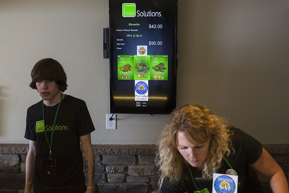 2020 Solutions offers two options: $42 for a pack of three filtered, pre-rolled cannabis, or 3.5 grams of Cinex, New Kush, Godzilla for $95 on Thursday, July 10, 2014, in Bellingham. Cinex and Godzilla are mixed sativa and indica and New Kush is an indica strain.