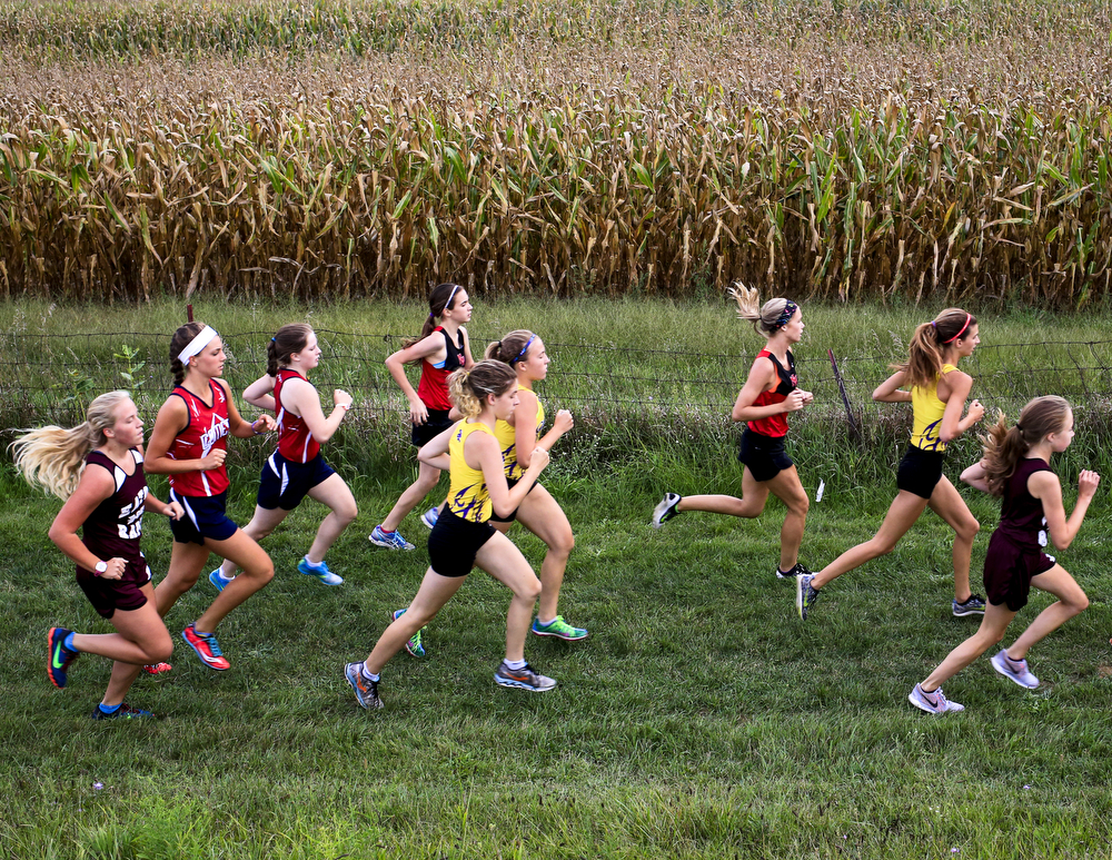 Girls race Wednesday, 9, 2015, at a cross country meet at Springport High School. Twenty six teams competed in the meet. (Nick Gonzales | Mlive.com)