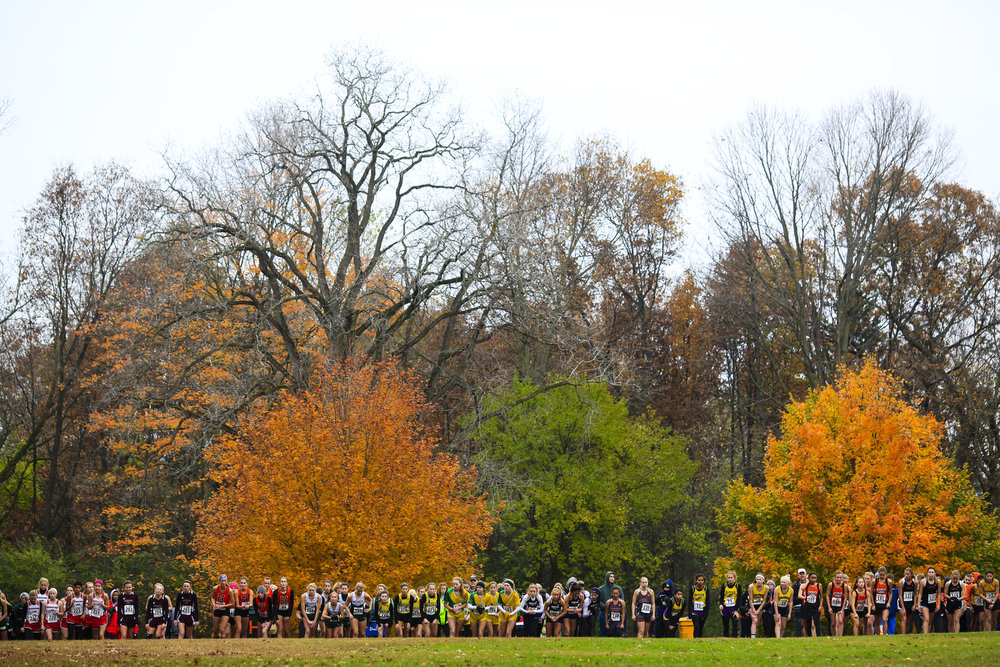 Runners compete in a Division 3 regional cross country meet Saturday, Oct. 31, 2015, at Ella Sharp Park in Jackson, Mich. Jackson Lumen Christi's girls team placed first and Hanover-Horton placed second. Hanover-Horton's boys team placed first and Napoleon placed third. (Nick Gonzales | Mlive.com)