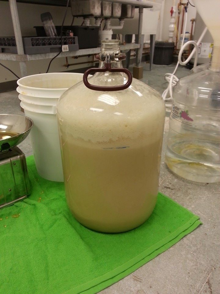 Small batch mead... frothy.