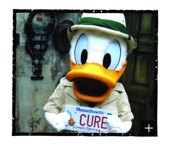 CC Web Donald Duck with plate-01.jpg