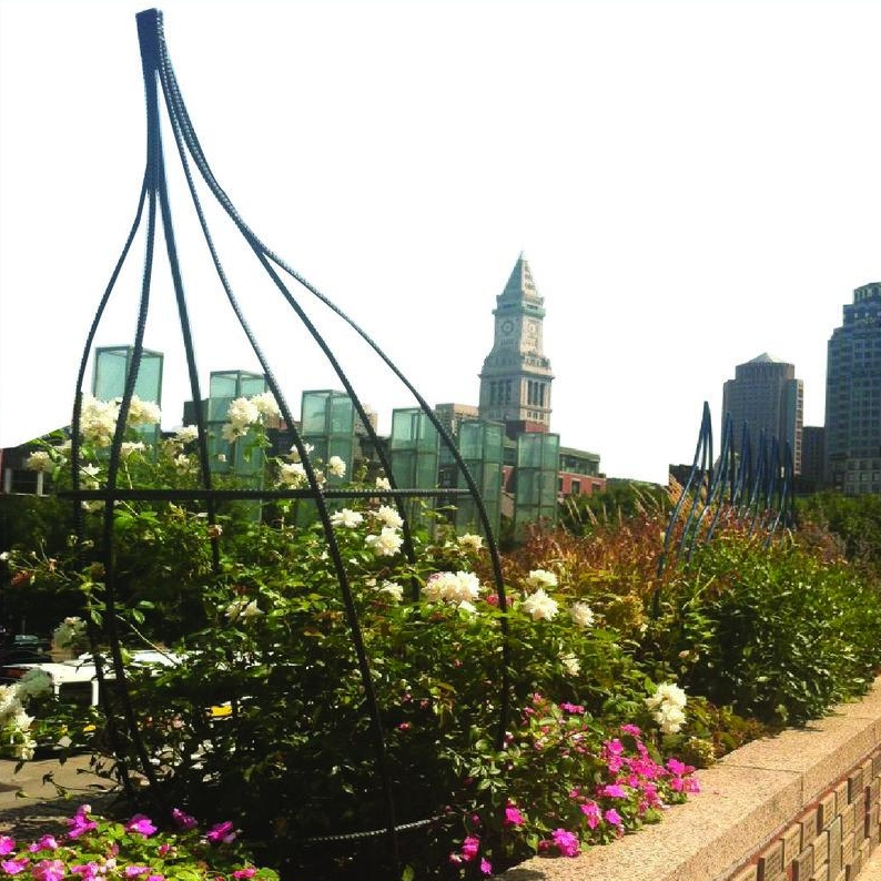 Our Garden - The Cancer Garden of Hope on Boston City Hall Plaza is located right in the heart of the city and features your engraved bricks and plaques...