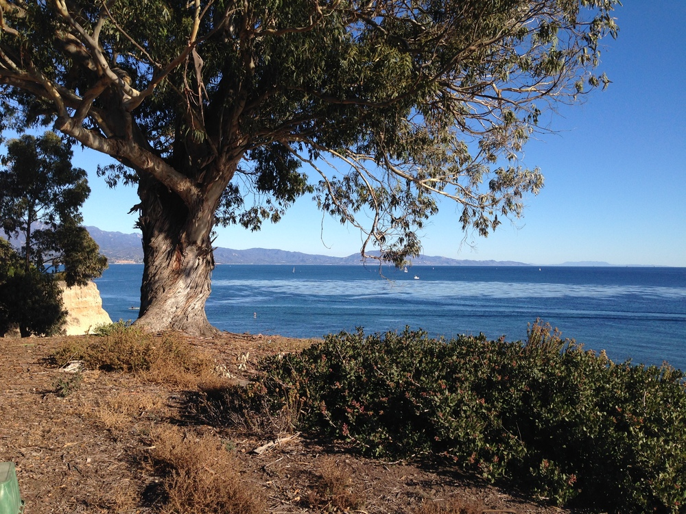 Shoreline Park, Santa Barbara
