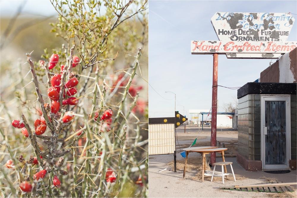 West-texas-gringo-honeymoon-3.jpg