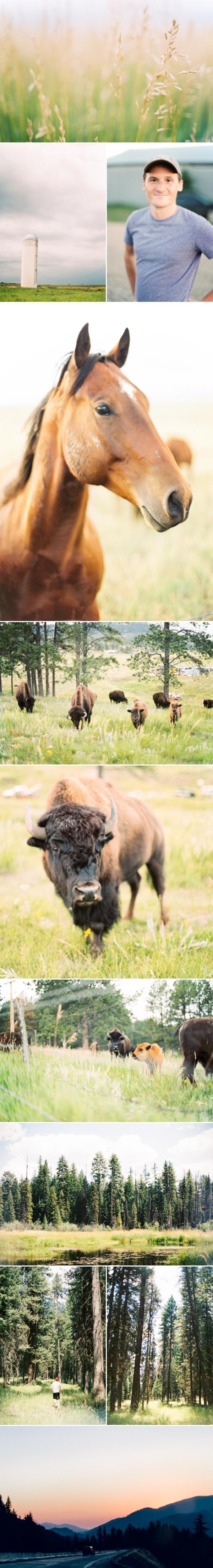 south dakota wyoming montana film photographer