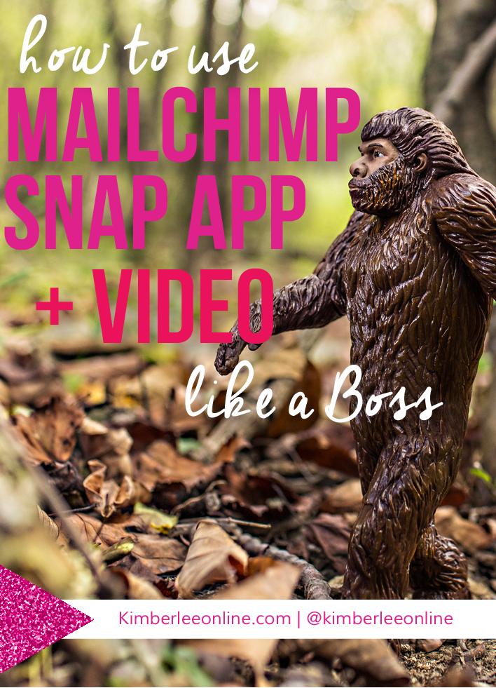 mailchimp-snapp-app-monkey.png