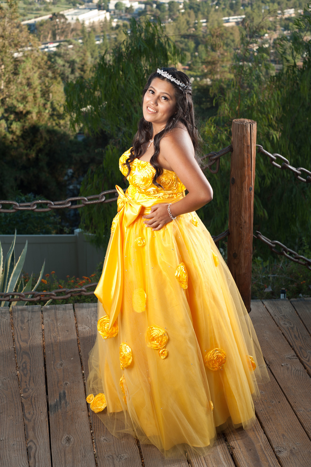 Ashley's Quinceanera