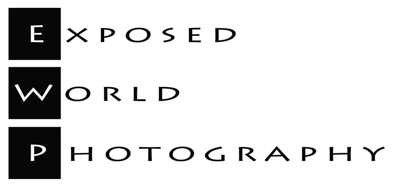 Exposed World Photography