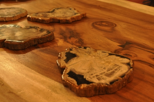 Petrified Wood Slice Price: $50-$110