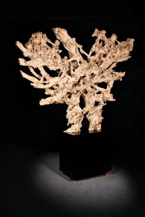 Teak Root Sculpture    Price: $1,925-$4500