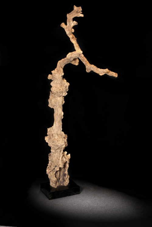 Root Coat Hanger Price: $235-$750