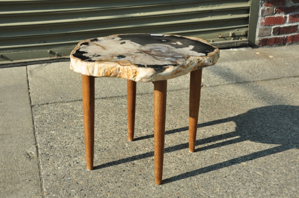"""Petrified Wood Side Table     Price: $385   20""""W x 17""""D x 18""""H"""